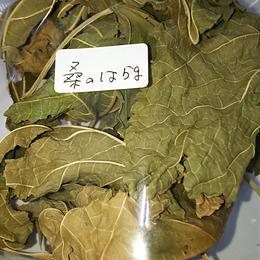 桑の葉5g