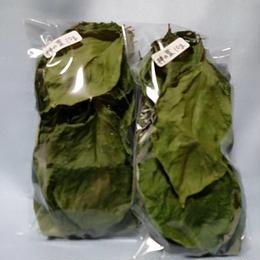柿の葉10g