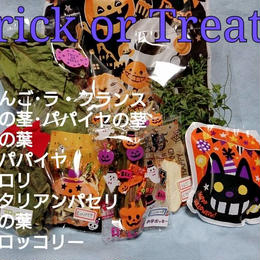 Trick or Treatセット