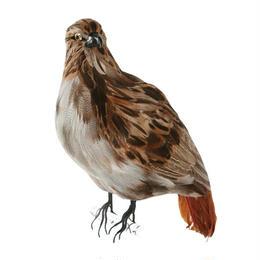 EAGLE〈L〉