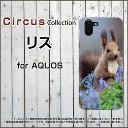 AQUOSシリーズ リス スマホケース ハードタイプ (品番caq-038)