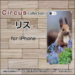 iPhoneシリーズ リス スマホケース ハードタイプ (品番ci-038)