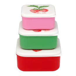 Wild Strawberry set of 3 Sack Boxes