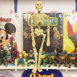Hanging Skull Toy/ハンギング スカルトイ/170922-3