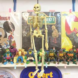 Hanging Skull Toy/ハンギング スカルトイ/170922-5