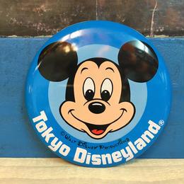 Disney Tokyo Disneyland Button/ディズニー 東京ディズニーランド 缶バッジ/171013-3