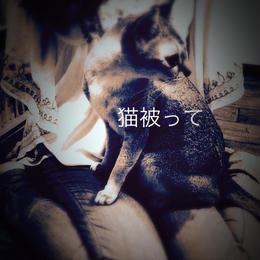 2015.6.28 1st配信シングル「猫被って」
