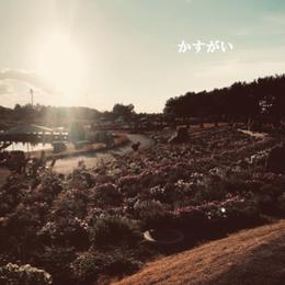2018.11.29 17th配信シングル「かすがい」