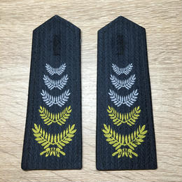 中国人2011式セキュリティ保安資格肩章 中級保安員