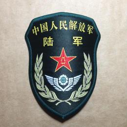 中国人民解放軍 15式 陸軍 部隊章