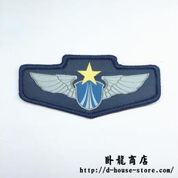 中国人民解放軍 空軍 07式迷彩服用布製胸章