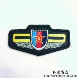 【中央軍委】PLA 15式 迷彩服用 布製ベルクロ胸章