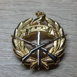 抗戦勝利70周年記念パレード 儀仗隊 胸章