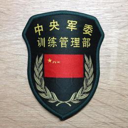 中国人民解放軍15式部隊章 中央軍委 訓練管理部