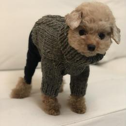 ヒサコさんの手編みセーター