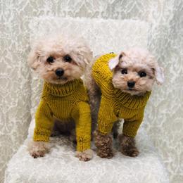 ヒサコさんの手編みニット(メリノウール)