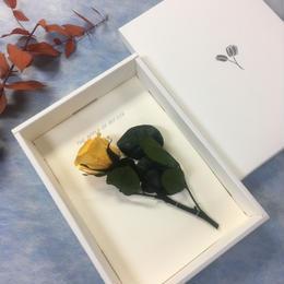 【ハンドメイドレターセット】ローズイエロー(P)