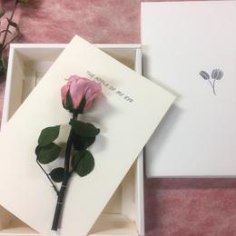 【ハンドメイドレターセット】ローズピンク(P)