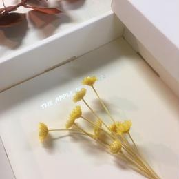 【ハンドメイドレターセット】マルガリータグランデ YELLOW(D)