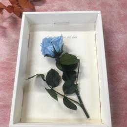 【ハンドメイドレターセット】ローズブルー(P)