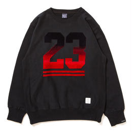 "APPLEBUM ""CHICAGO 23"" Crew Sweat"