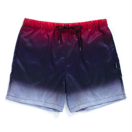 Gradation Board Shorts