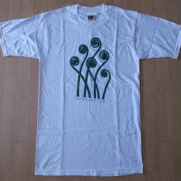 90's Karl Blossfeldt植物 フォトTシャツSカール ブロスフェルト