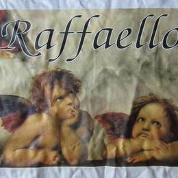 90's ラファエロ 天使 システィーナの聖母 Tシャツ