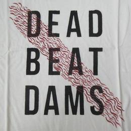 日本未発売 USA製 パタゴニア DEAD BEAT DAMS Tシャツ M白 PATAGONIA DamNation ダムネーション ダム 建設 反対 石