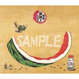 NAGA-妄想夢滑り 西瓜の巻 色紙サイズ-