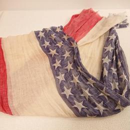1890s~ American ceremonial Antique flag