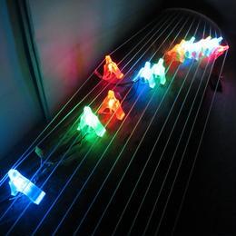 光る琴柱 ライブ イベント ディナーショーに 廉価版V1