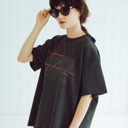 BIG T-shirts(zaha・charcoal gray)