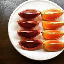二十四節気のお野菜+店長特選セット(M)-雨水-  2/21(木)、2/22(金)、2/23(土)お届け便