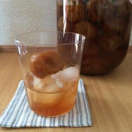 梅シロップ レシピ・粗糖付き手作りキット【先行予約】※同梱不可※