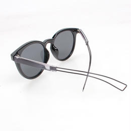 narrow temple sunglasses2