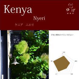 ケニア      ニエリ 500g(250g×2)