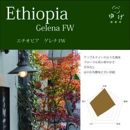 エチオピア グジ 100g