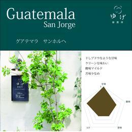 グアテマラ    サンホルヘ 100g