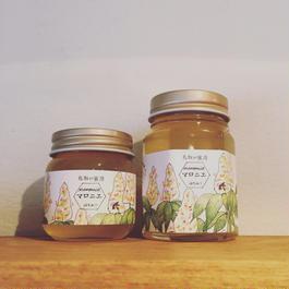 福田さんのマロニエ蜂蜜(60g)