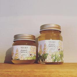 福田さんのマロニエ蜂蜜(90g)