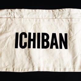 """DRESSSEN LW17 LOWER WALL APRON  """"ICHIBAN"""""""