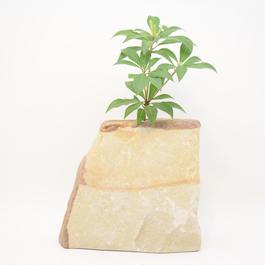 Real Stone Vase 1233