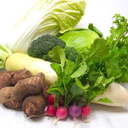 【Lサイズ】太陽の国からやってきた!ミネラルたっぷり野菜セット/ 徳島県