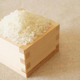 ひのひかり(玄米) /5kg/熊本県