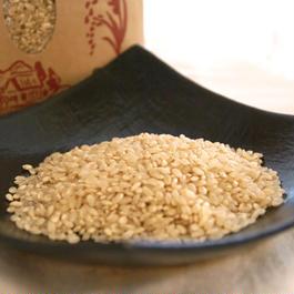 特別栽培米コシヒカリ玄米5㎏/千葉県山武市