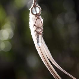 ヒマラヤ水晶∞エミューの羽∞フローライトピアス