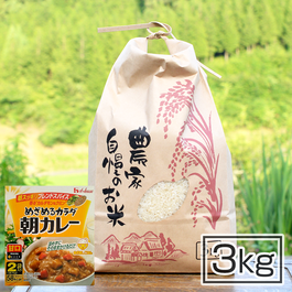 【お茶碗サイズのカレーセット】あったかまごごろ仕送り便・ハウス「朝カレー」6袋付 コシヒカリ 3kg