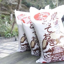 有機 玄米 29kg こだわりの店大地の無農薬玄米