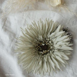 Dahlia's corsage